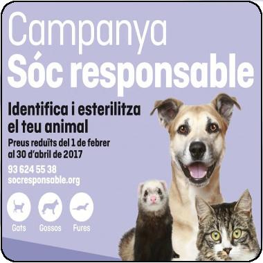 Campanya Sóc responsable 2017: Identifica i esterilitza el teu animal