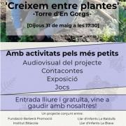 Acte de cloenda del projecte 'Creixem entre plantes'